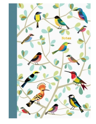 cahier doré oiseaux